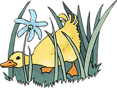 duckling-46049_1280.png
