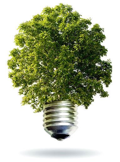 Impacto ambiental Tecnorem