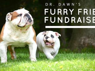 Dr. Dawn's Furry Friend Fundraiser