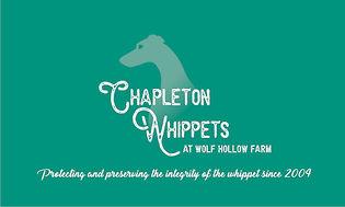 chapleton-back-nobleed.jpg