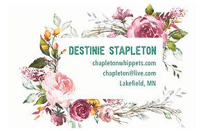 chapleton-front-bleed_Back 2 copy.jpg