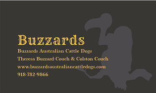 businesscards-front.jpg