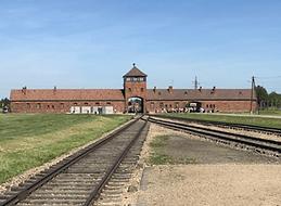 Day-5-Auschwitz-Birkenau.png