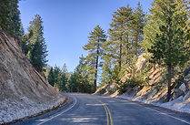 mountain-forest-road.jpg