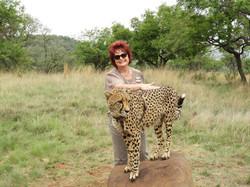Elize Cheetah (2)