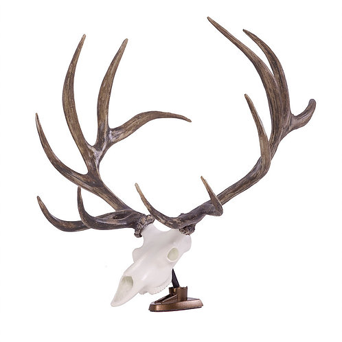 BIG RACK Bull Elk Skull and Antlers Raxx Figurine