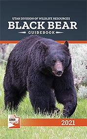 bear_cover_2021.jpg