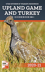 2020-21_upland_turkey_cover.jpg