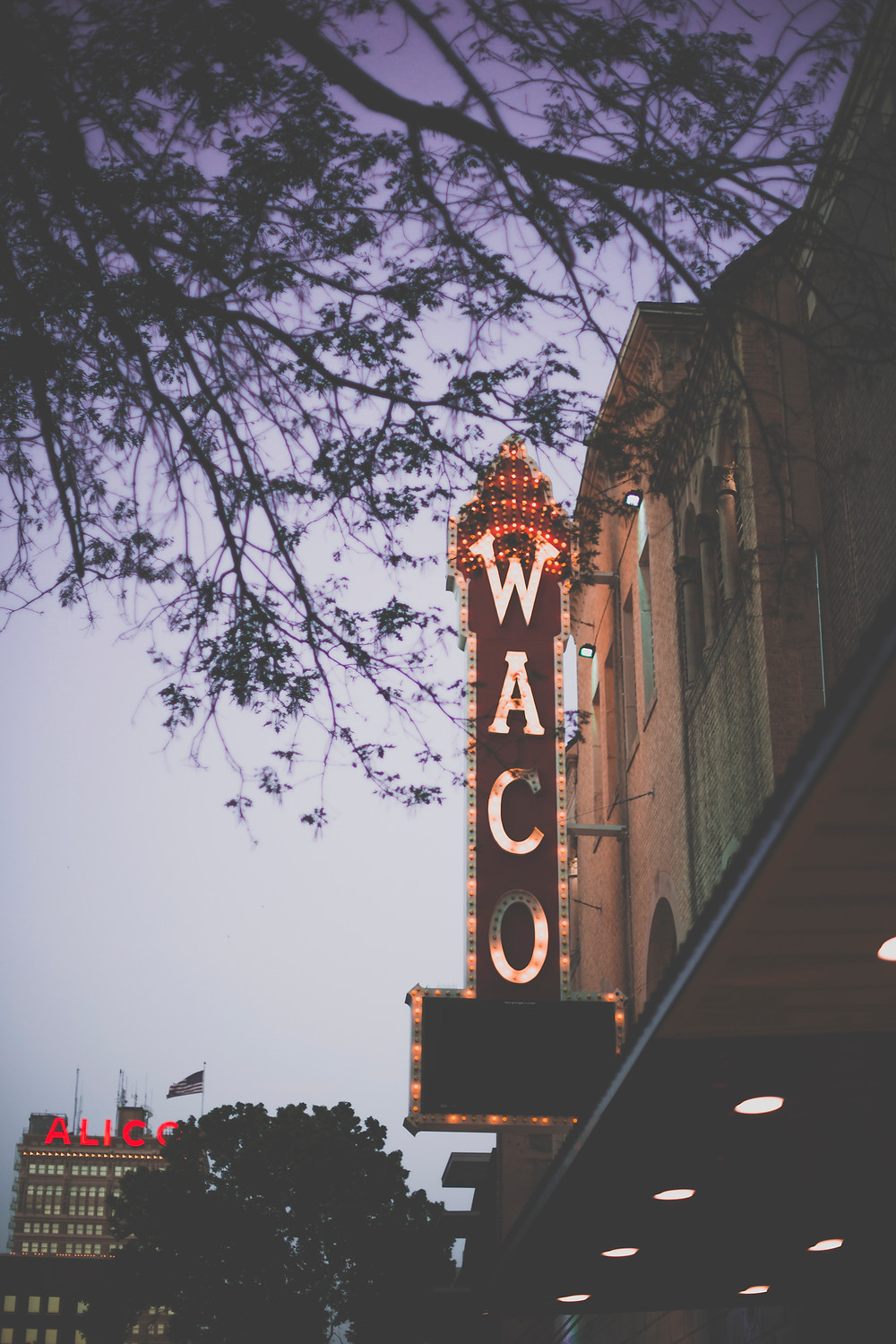 Lady and Lion Co. | Waco Guide
