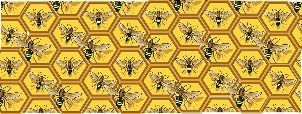 beehive background.png