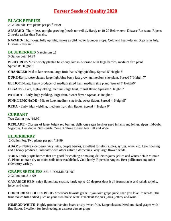 Fs Berries Page1.jpg