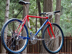 Ritchey Project-20