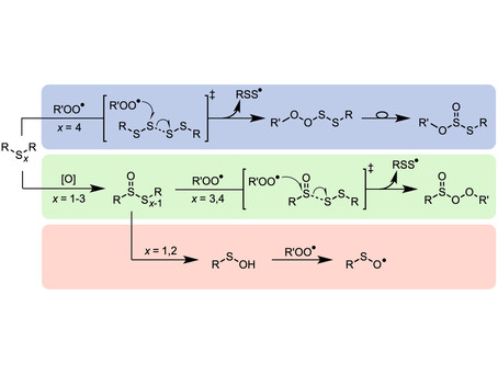 """Our accepted paper on polysulfide chemistry was selected as a """"Hot Article"""" in Chemical Sc"""