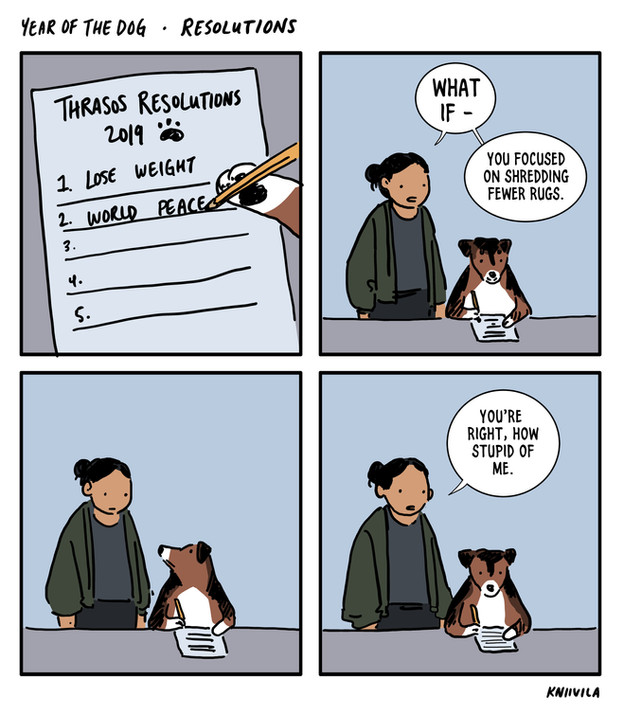 Year of the Dog - Resolutions