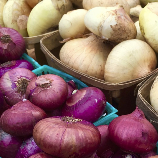 Colorful Onions in the Greenmarkets