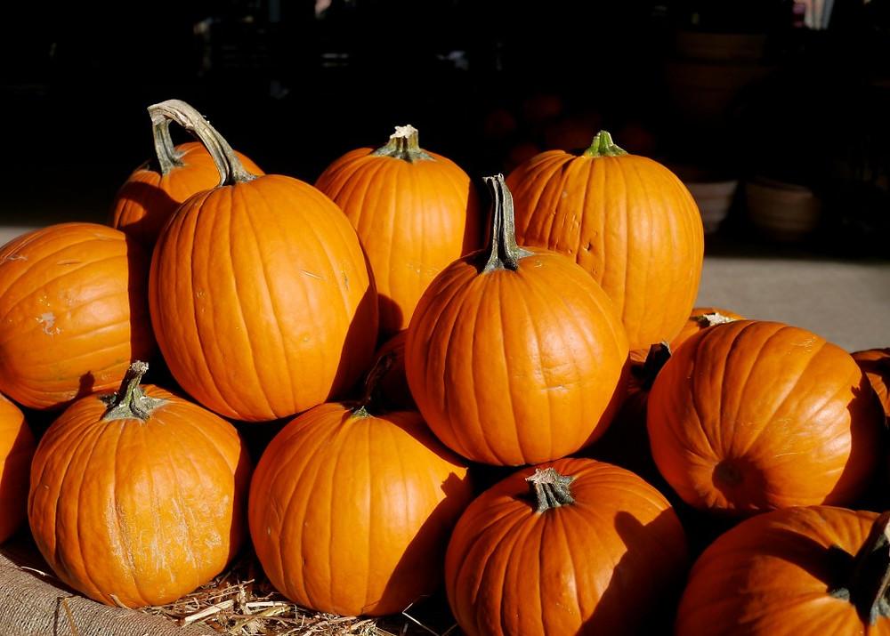 Pumpkins at Flea Marqueta - 2013-09-15 at 16-54-48