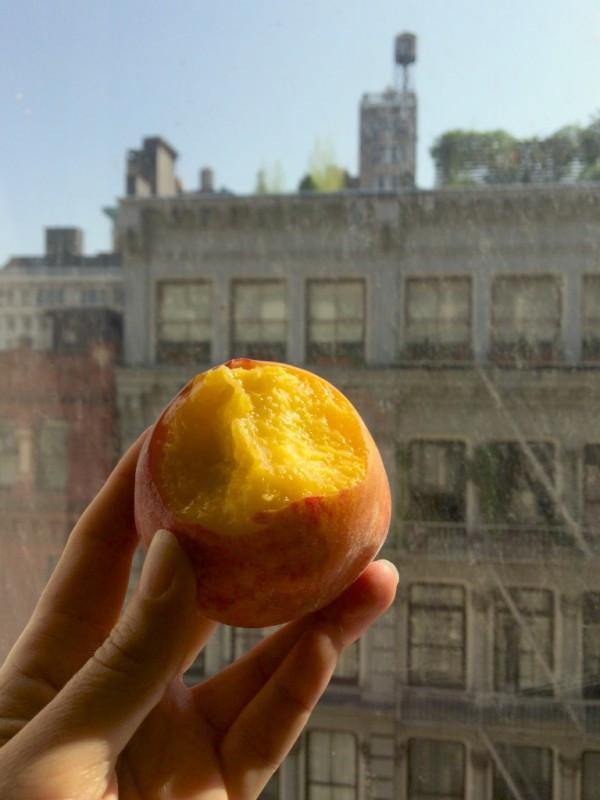 My first peach of summer