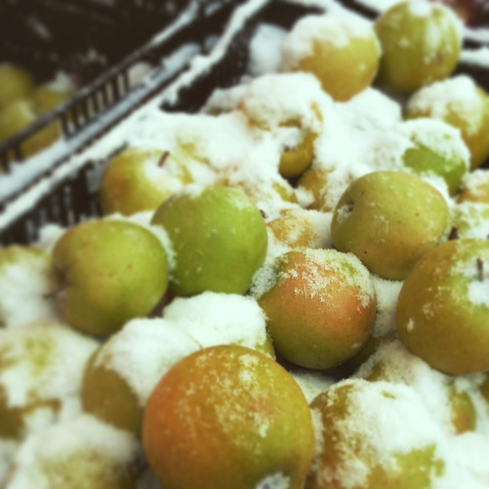 Snowy green apples