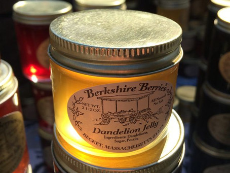First Hint Of Spring: Dandelion Jelly from Berkshire Berries