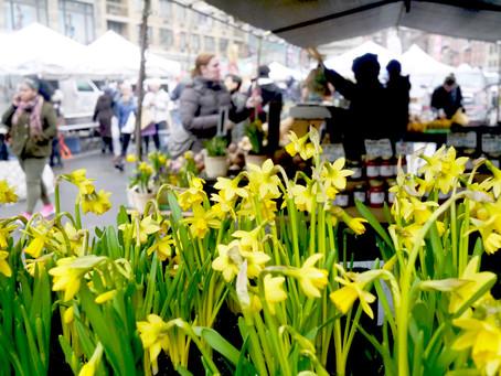Weekend Market Picks April 1 & 2, 2017 – Hello Again!