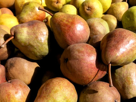 Seasonal Pears: Bite Right In Or Make Them Into Sweet and Savory Fall Treats