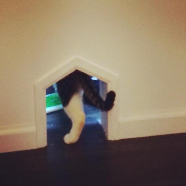 Secret Kitty Door at Meow Parlour