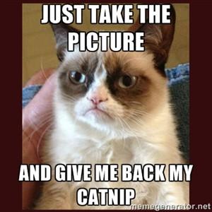 Courtesy of Grumpy Cat