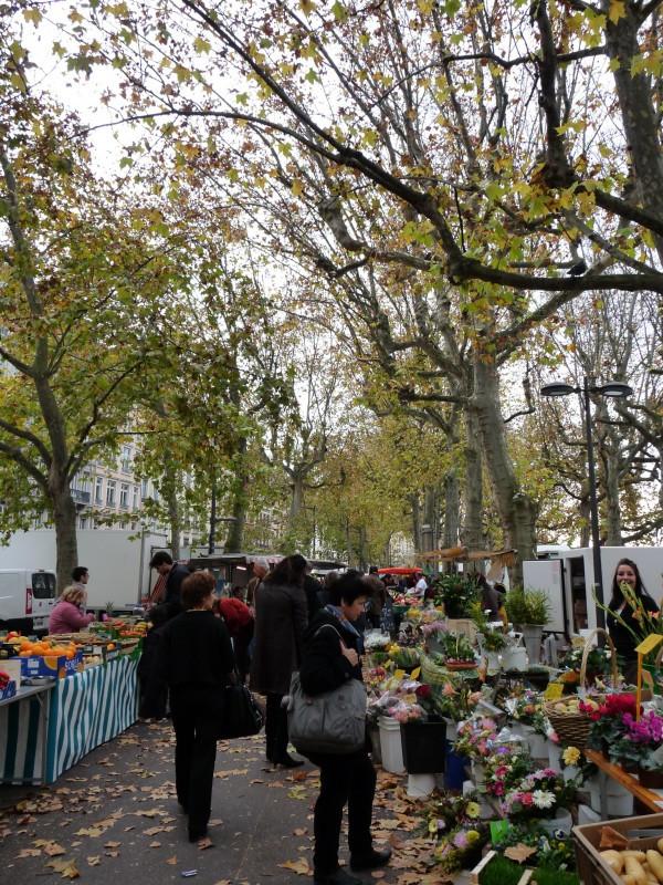 Lyon Saint Antoine Farmers  Market Under the Trees