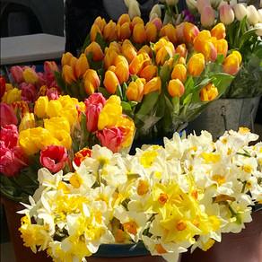 Weekend Market Picks April 21 & 22, 2018: Earth Day
