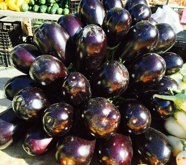 Eggplants from Phillips Farms Glowing in the Sunshine