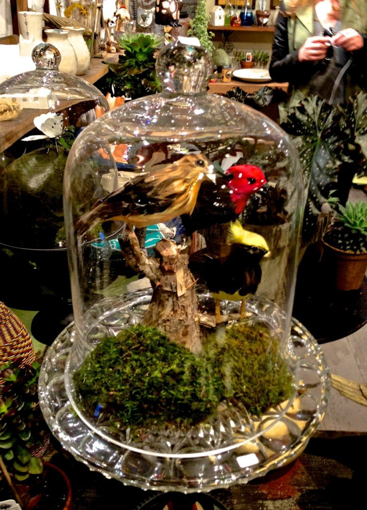 Birds and Baubles Under Glass from Junk Lab