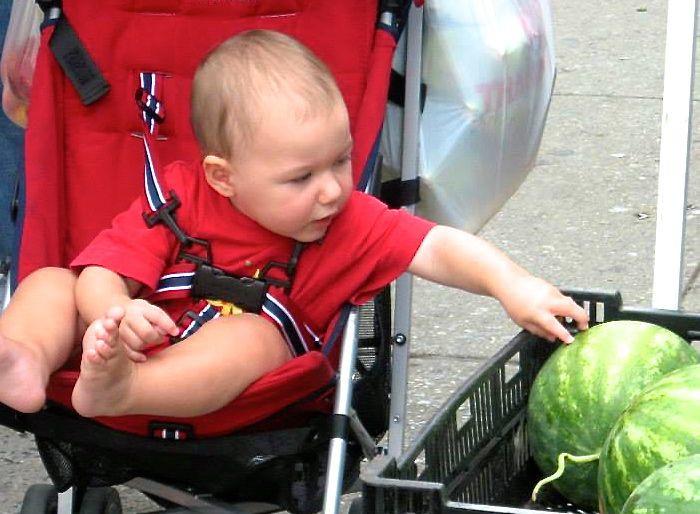 A Discerning Greenmarket Customer