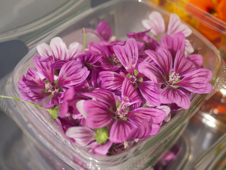 Eating Beauty: Colorful Edible Flowers from Windfall Farms