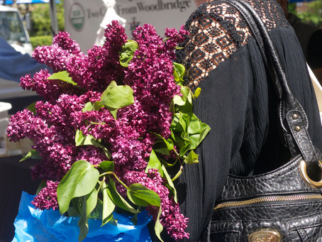 I Cannot Get Enough Of These Glorious Spring Blooms In the Greenmarkets