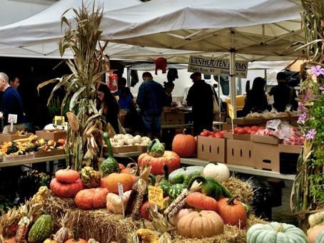 Weekend Market Picks October 15 & 16, 2016: It's Time To Get Your Pumpkin