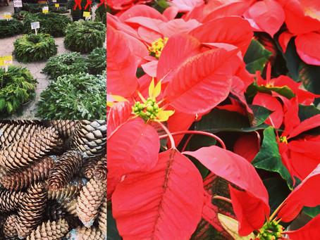 Weekend Holiday Market Picks for December 5 – 6, 2015