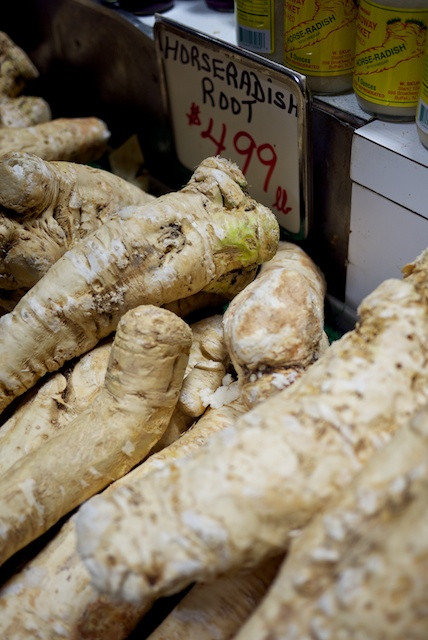 Fresh, grated horseradish root will definitely clear your sinuses!