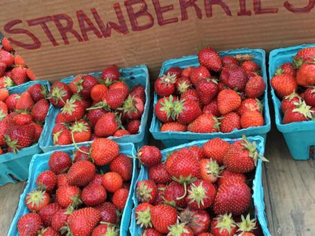 Weekend Market Picks June 11 & 12, 2016: Summer Strawberry Season