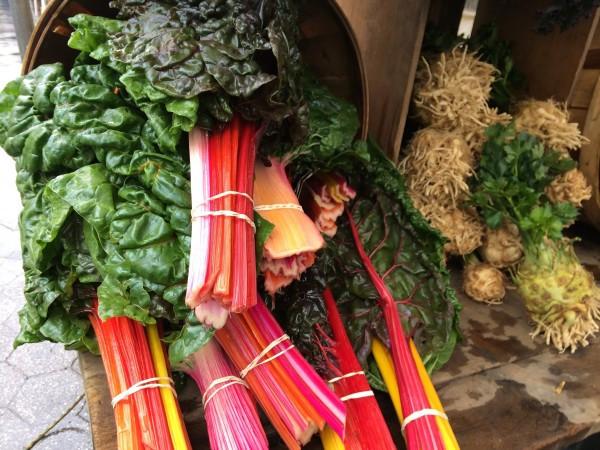 Rainbow Kale from Tamarack Hollow Farm