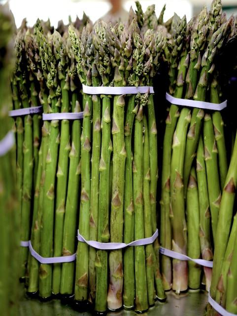 Asparagus Forest - Cedar Hill / Kernan Farms at the Greenmarkets 6 days a week