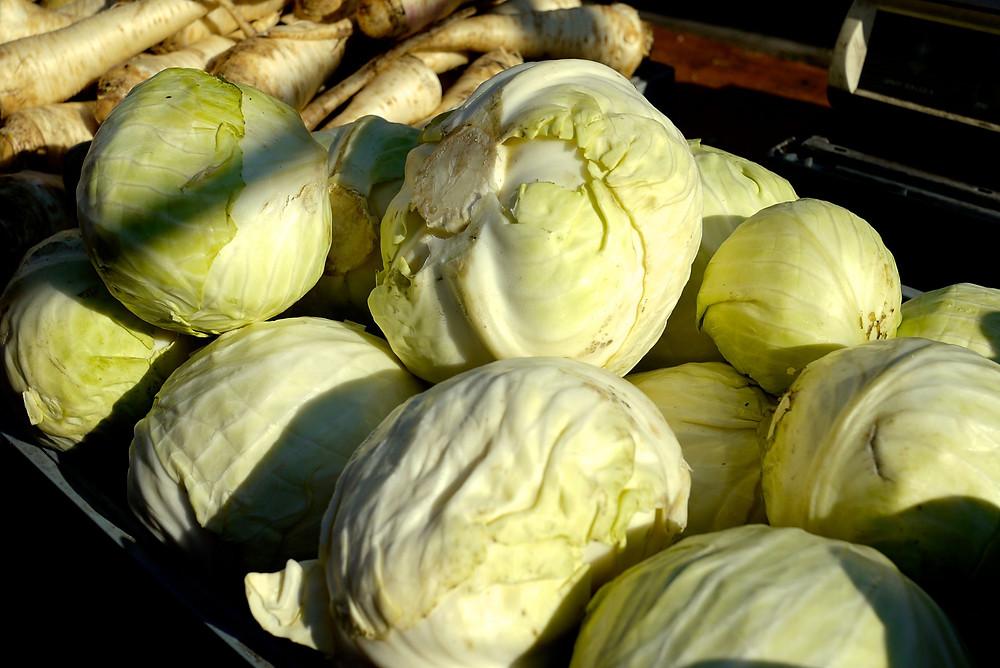 Cabbage S S O Farm Union Square