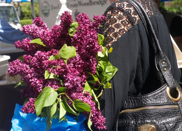 Armsful of Lilacs