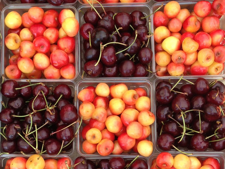 Weekend Market Picks July 13 & 14: Cherry Season with Samascott Orchards