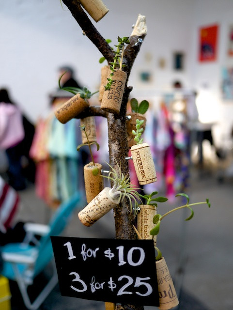 CorkBuds are the perfect gift for city people