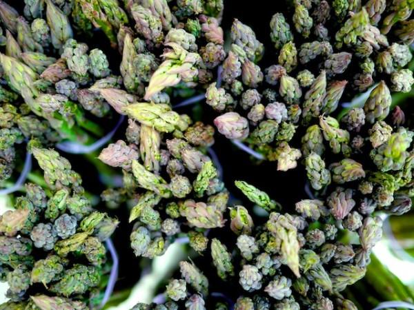 Purple green Asparagus from Cedar Hill / Kernan Farms