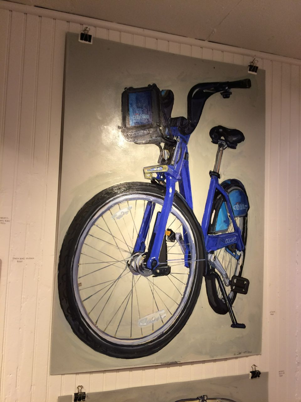 Yup, that's a portrait of a CitiBike!