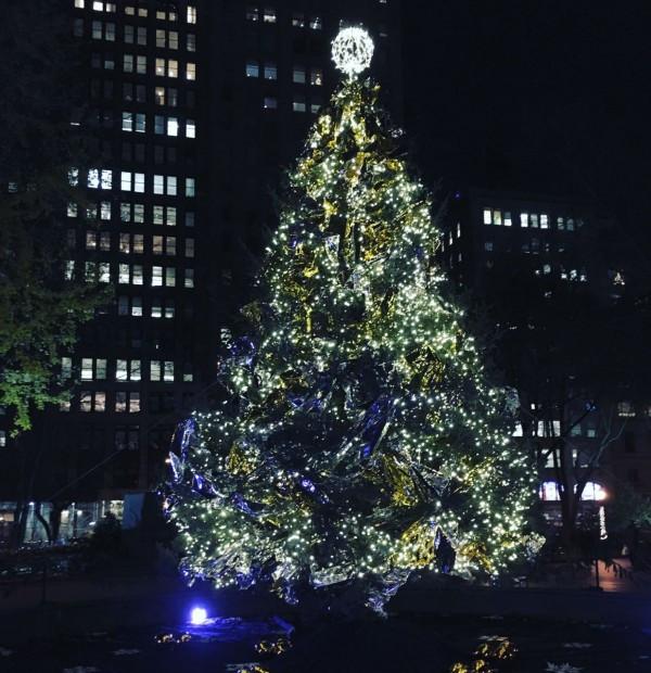 Madison Square Park Tree
