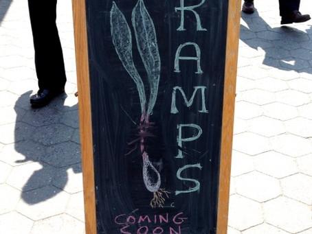 Weekend Market Picks April 13 & 14, 2013: Spot the First Ramps