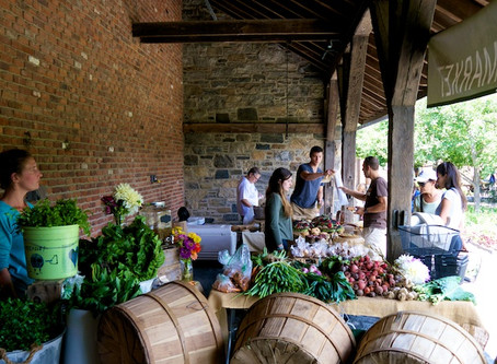 Guest Market: Stone Barns Center Is Creating the Future of Farming