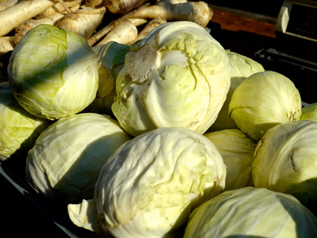 Weekend Market Picks 1/26 & 27/2013: Cabbage from S & S O Produce Farms